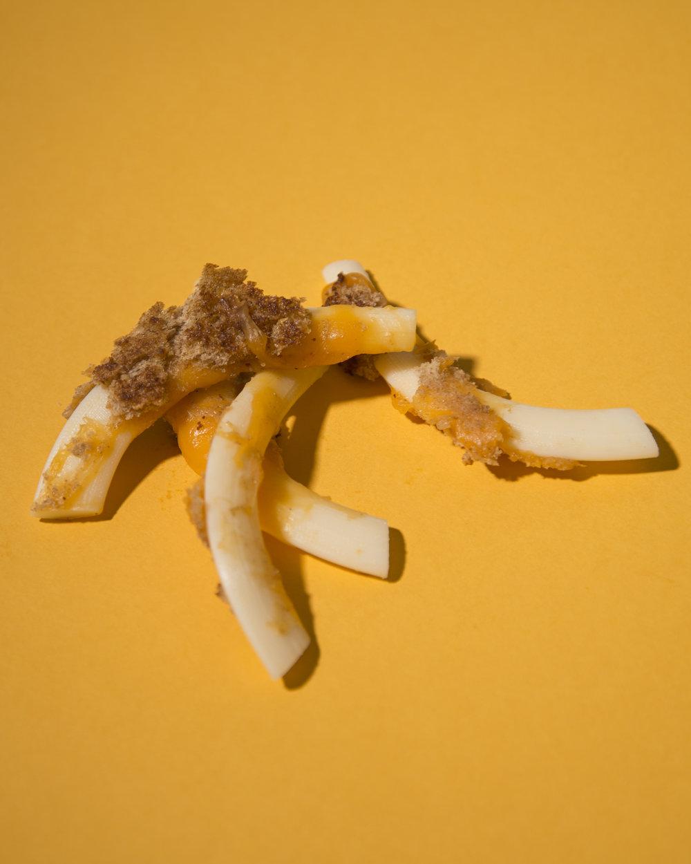 bone cheese2.jpg