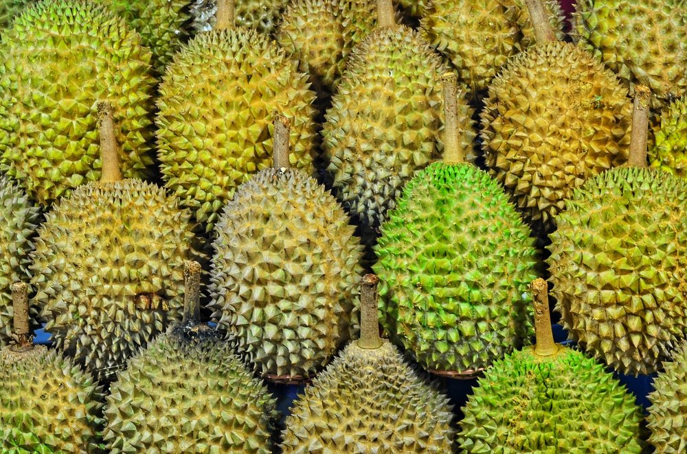 Durian Meyvesi. Fotoğraf:  Jonny Clow