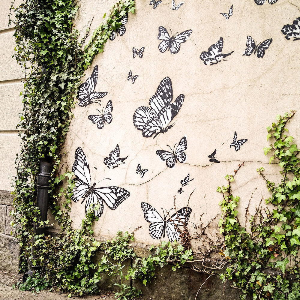 Butterfly wall in Brecon. Not sure why this was made but I think it is super cute!