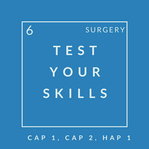 Surgery Quiz 6