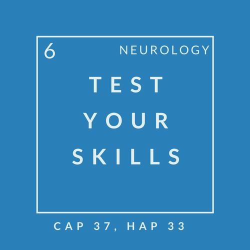 Neuro Quiz 6