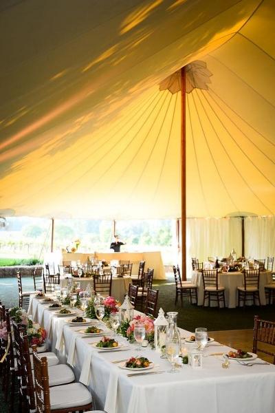 Keswick-Vineyards-wedding-Keswick-VA-137001.1478270583.jpg