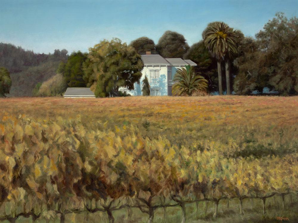 Vineyard Estate