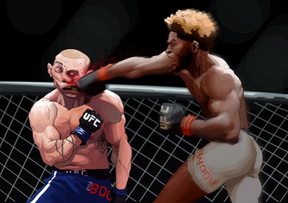 boxers .jpg