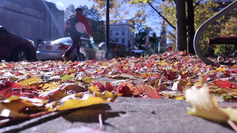 Ithaca sees rise in reports of Sexual assault - In 2018, Cornell University had the highest reported rate of sexual assault on college campuses in New York. The local crisis hotline also saw an increase in calls.Watch full news package here