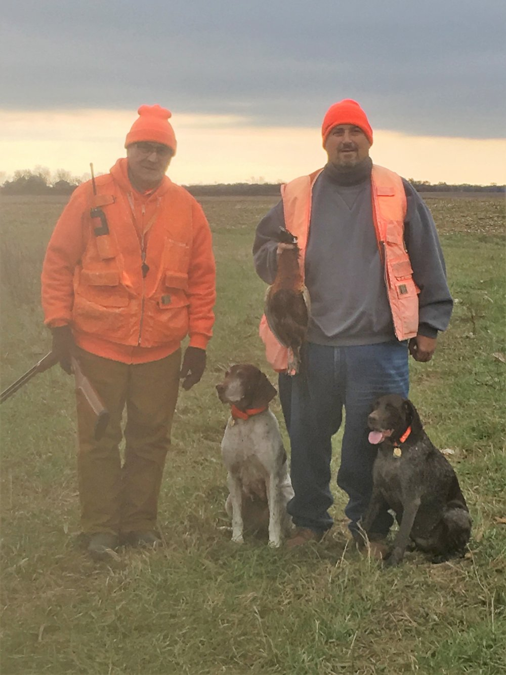 Connie and Frank Susi hunting wild pheasants in Iroquois county
