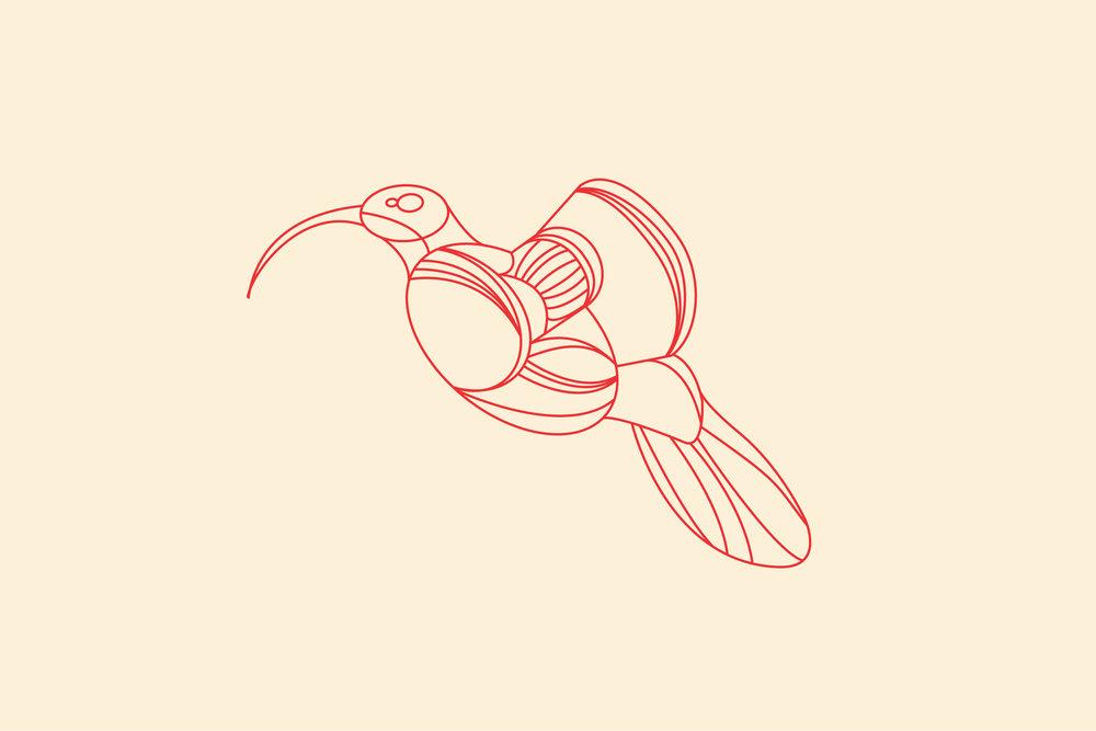 Birds-All.jpg