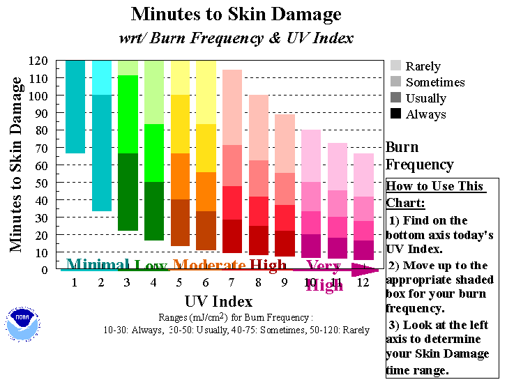 Background Research - One out of every 5 Americans will develop a form of skin cancer in their lifetime, and each year, nearly 5 million Americans are treated for skin cancer at a cost of about $8.1 billion.Yet the majority of skin cancer can be prevented by avoiding too much exposure to ultraviolet (UV) rays from the sun.