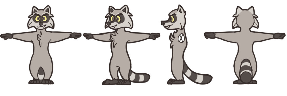 raccoon turnaround_small.jpg