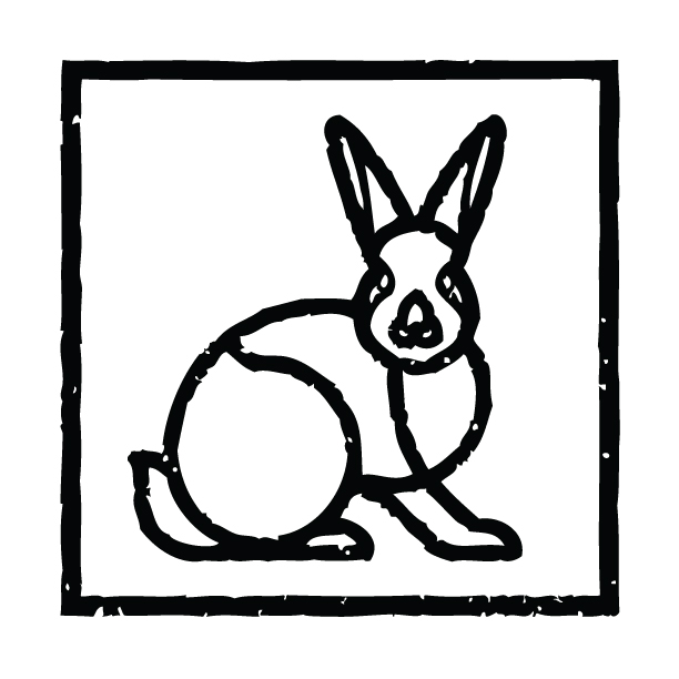 Rabbit-With-Square.jpg