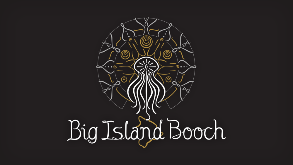 We introduced a completely new Big Island Booch logo, based on imagery established in an illustration made for the company that was previously used as the brand's primary image.