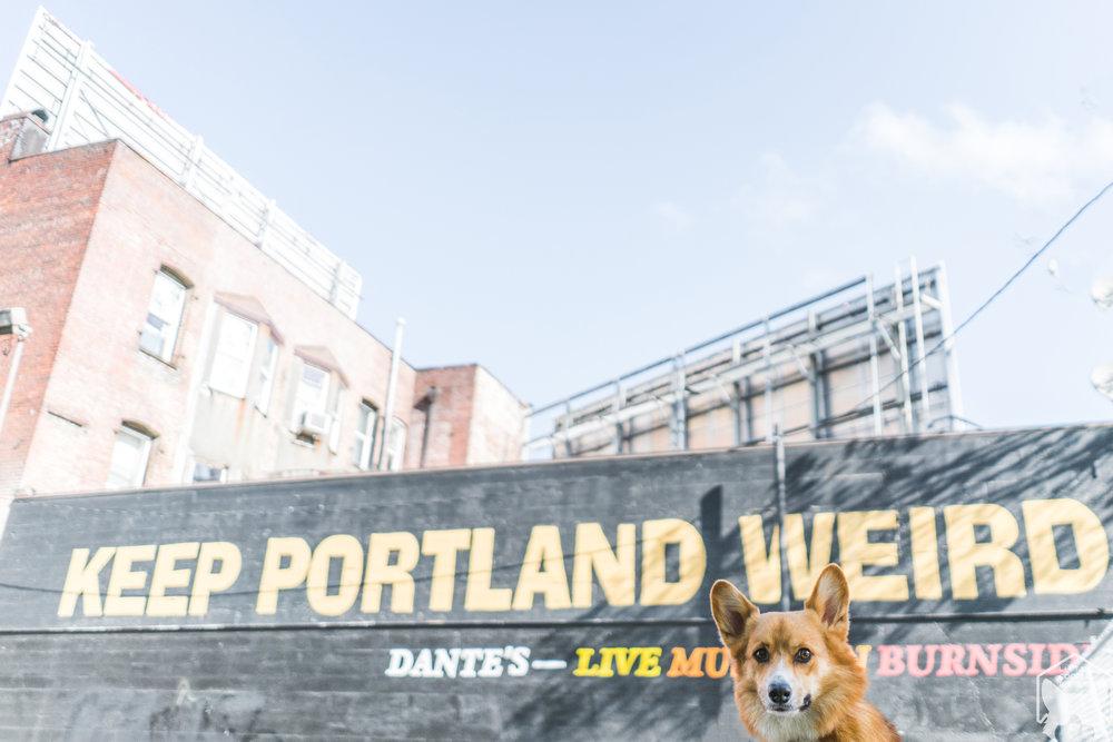 Keep Portland Weird sign on 3rd Street between Burnside and Ankeny.