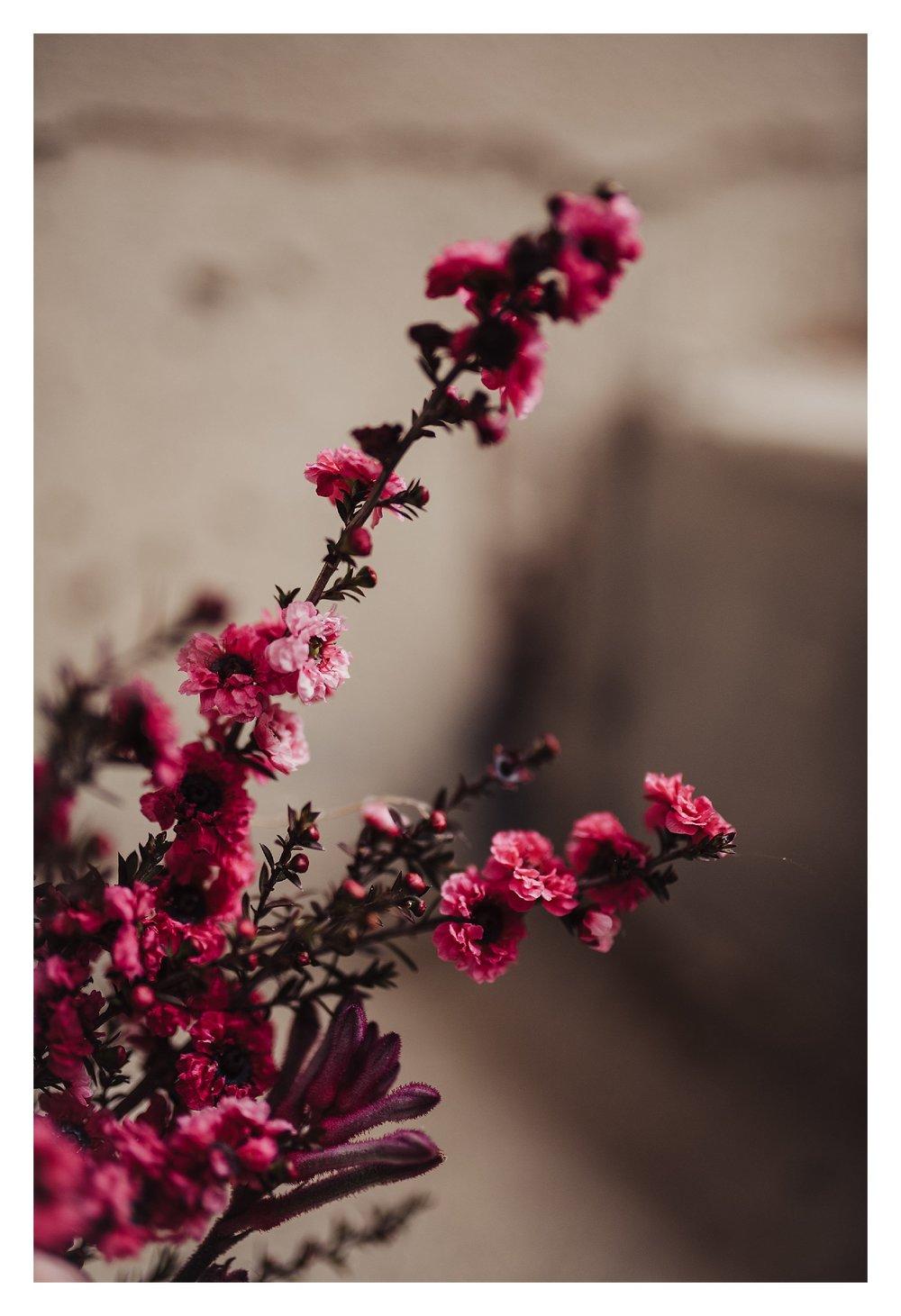 soft-blush-bouqet_0631.jpg