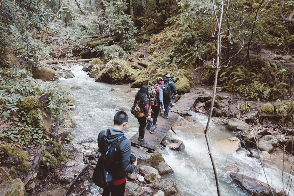 big-basin-berry-creek-crossing-hike-and-shoot-1.jpg