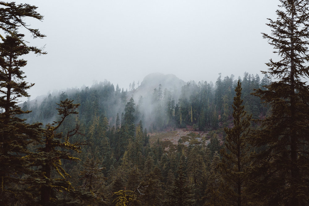 five-lakes-trail-fog-hike-and-shoot-1.jpg