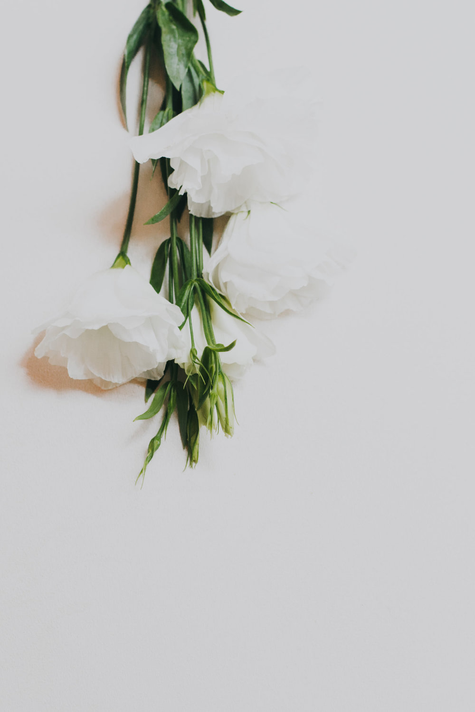 irapuato-boda-fotografia-jardines-alcalde-guanajuato-paulina-juan-pedro--3.jpg