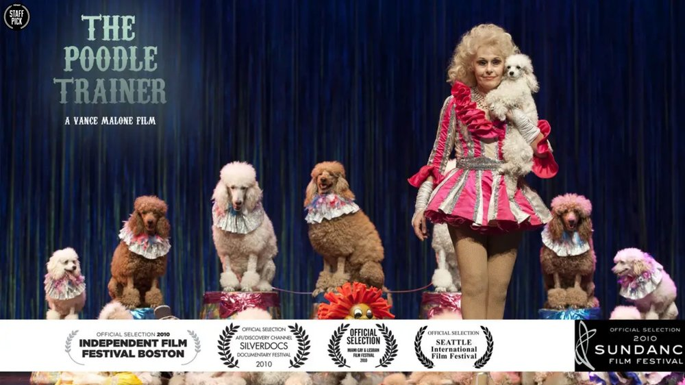 The Poodle Trainer - Irina Markova is a poodle trainer with a tortured past. This beautiful and poignant short doc explores the magical world Irina and her poodles live in.