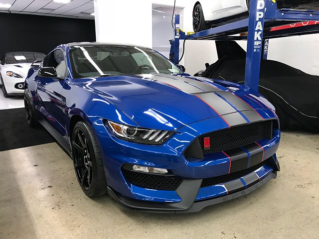 Another GT350 R in for Clear Bra and Ceramic Pro! Protect your investments with Executive 🛡⚔️ #executivepaintprotection #execpaintpros #lidetailers #ceramicpro #nomorewax #detailsdoneright  #thecoatingkings #detail #paintcorrection #car #carporn #carsofinstagram #nyc #wheelrepair #paintprotection #clearbra #adamspolishes #ceramicprousa ——————————————————————— New York's Premier Retail Detail Supply! We carry only the best premium product lines such as @adamspolishes, @sonaxusa, #menzerna, @carpro_global, @chemicalguys, @bigfootrupes, premium microfibers, and @ceramicpro at our continuously growing facility! 258 Broadhollow rd. Farmingdale, NY 11735 ---------------------------------------------------- Contact us @execpaintpros for all of your paint correction, clear bra, vinyl wraps, and permanent coating needs! Call 631.828.9166 or email contact@executivepaintprotection.com to reserve your appointment today! ———————————————————————