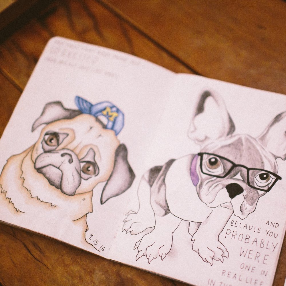 custom-pet-illustration-french-bulldog-pug.jpg