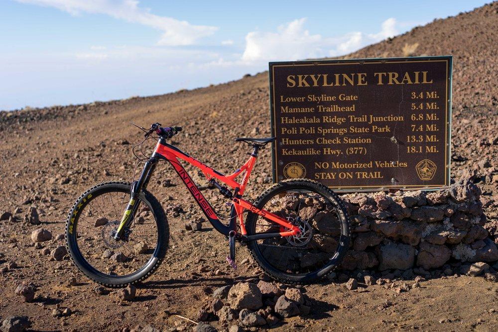 Skyline Blog-2.jpg