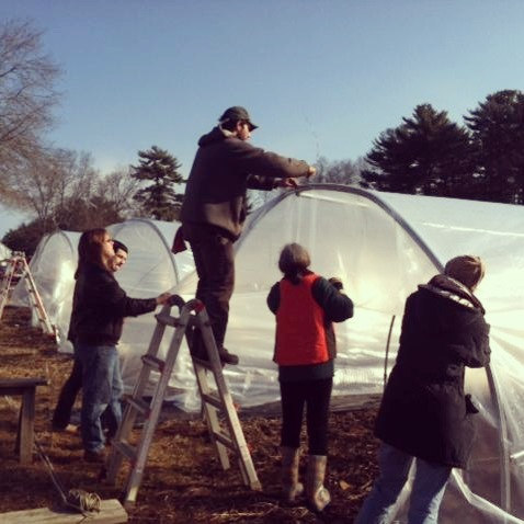 Volunteers helping me putting plastic on our hoophouses one chilly day in April 2012