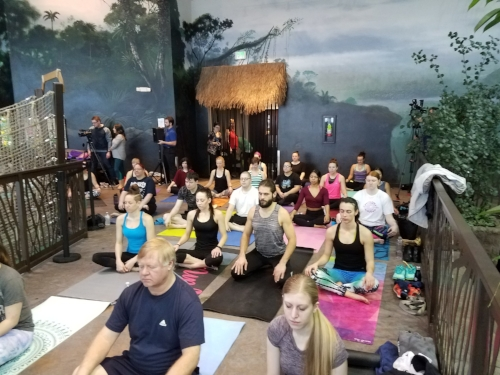 Around 50 people showed up to sweat in the serene rainforest environment!