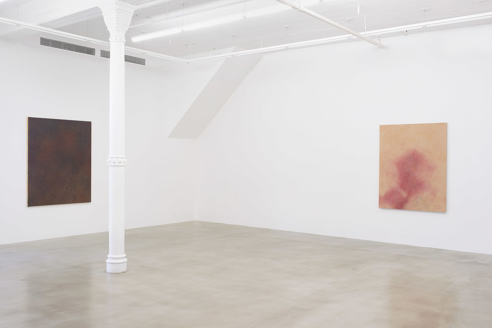 Installation shot Mud Root Ochre Leaf Star. Courtesy James Cohan Gallery.  Image Phoebe d'Heurle.