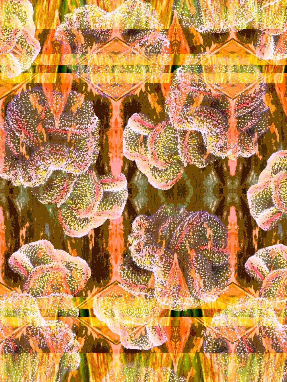 JL00181 Grassland Aliens2.jpg