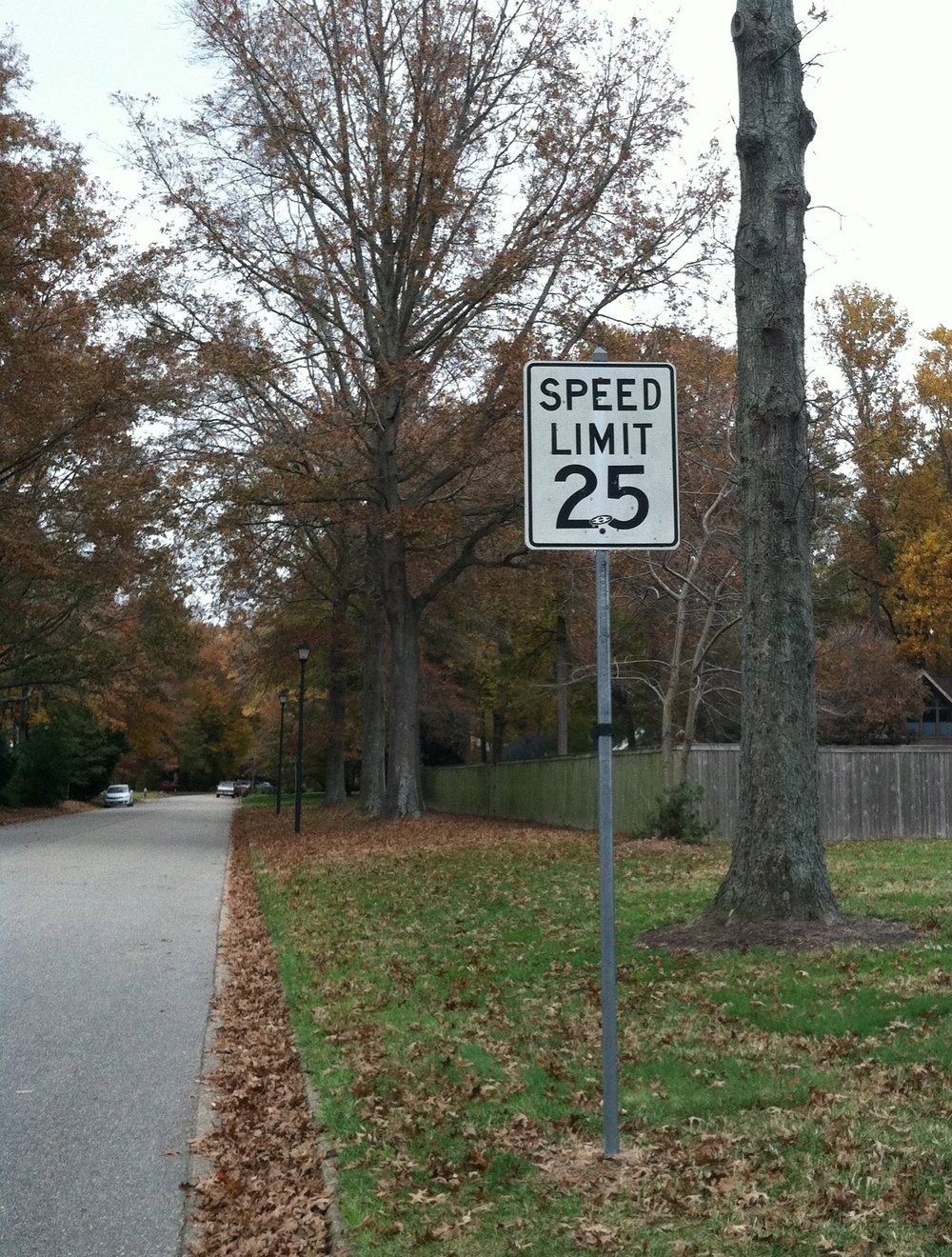 Our speed limit in Lago Mar is a MAXIMUM of 25 mph.  Please slow down and yield to pedestrians.  Remember, children and pets are unpredictable.  Your care and attention makes a difference.  Thank you.