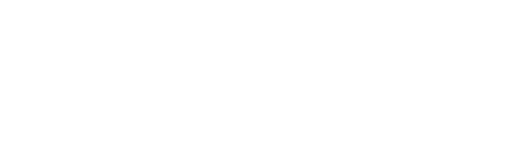 incipio group