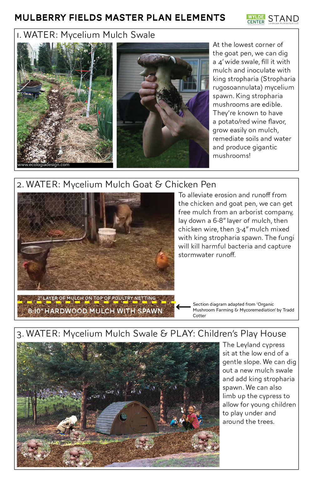 170707_MulberryFieldsMasterPlan-med-2.jpg