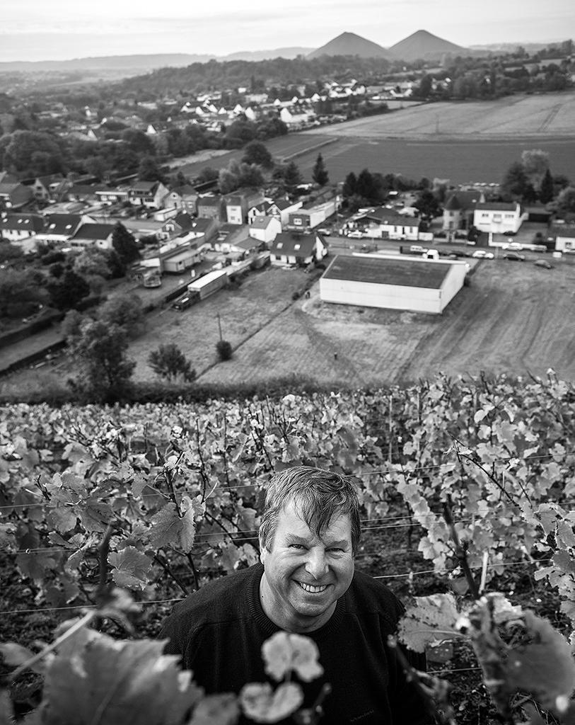 04 charbonnay 2014 vigne - copie.jpg