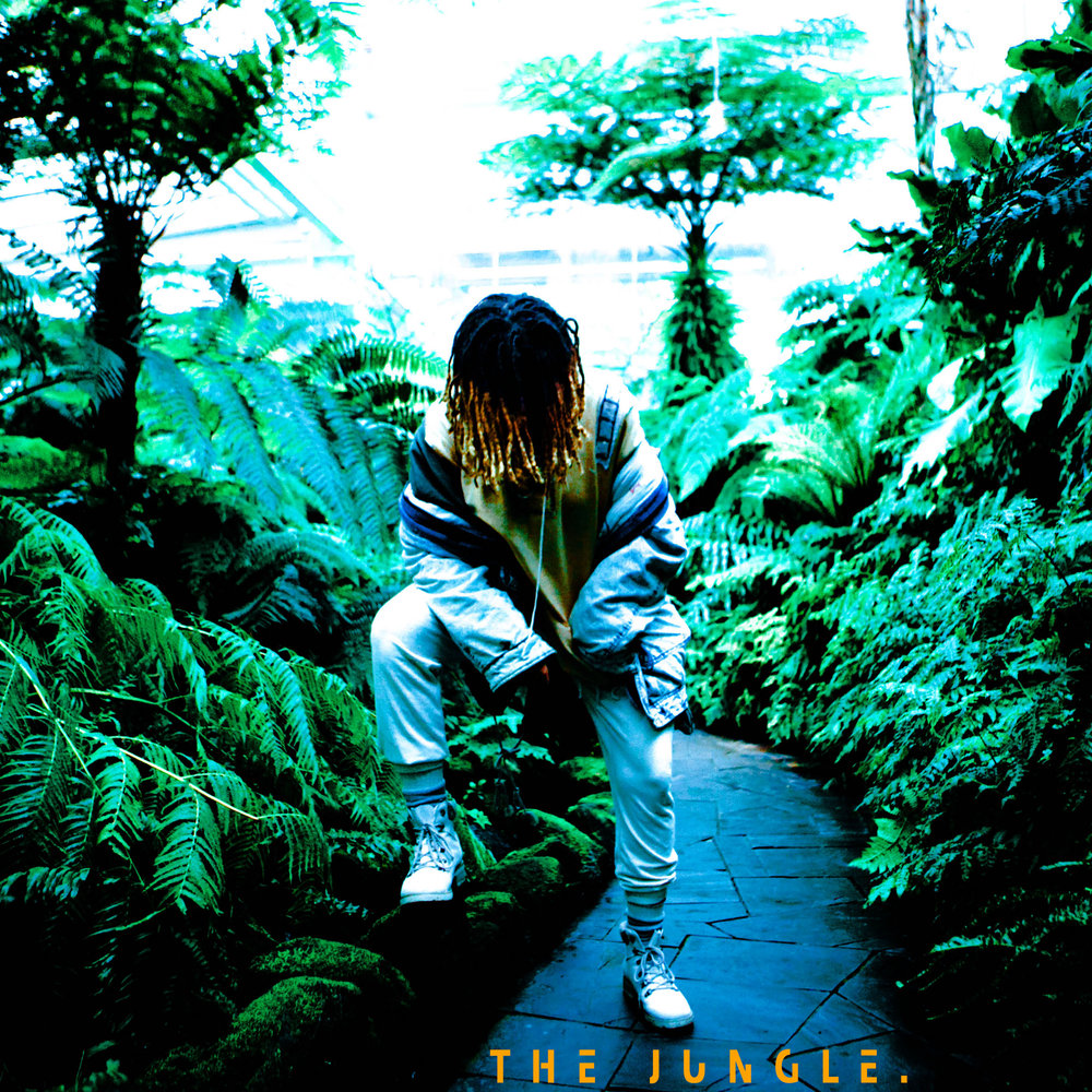 The jungle cover.jpg