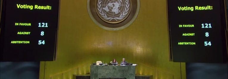 UN vote on Declaration of the Rights of Peasants and Other People Working In Rural Areas