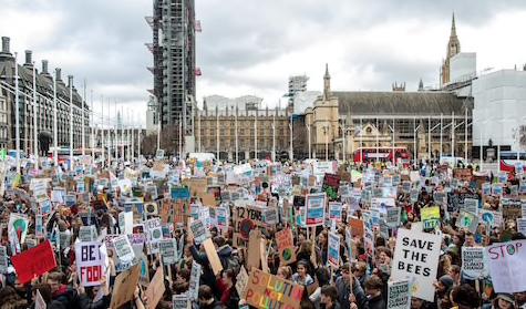 Children in Westminster for the school strike