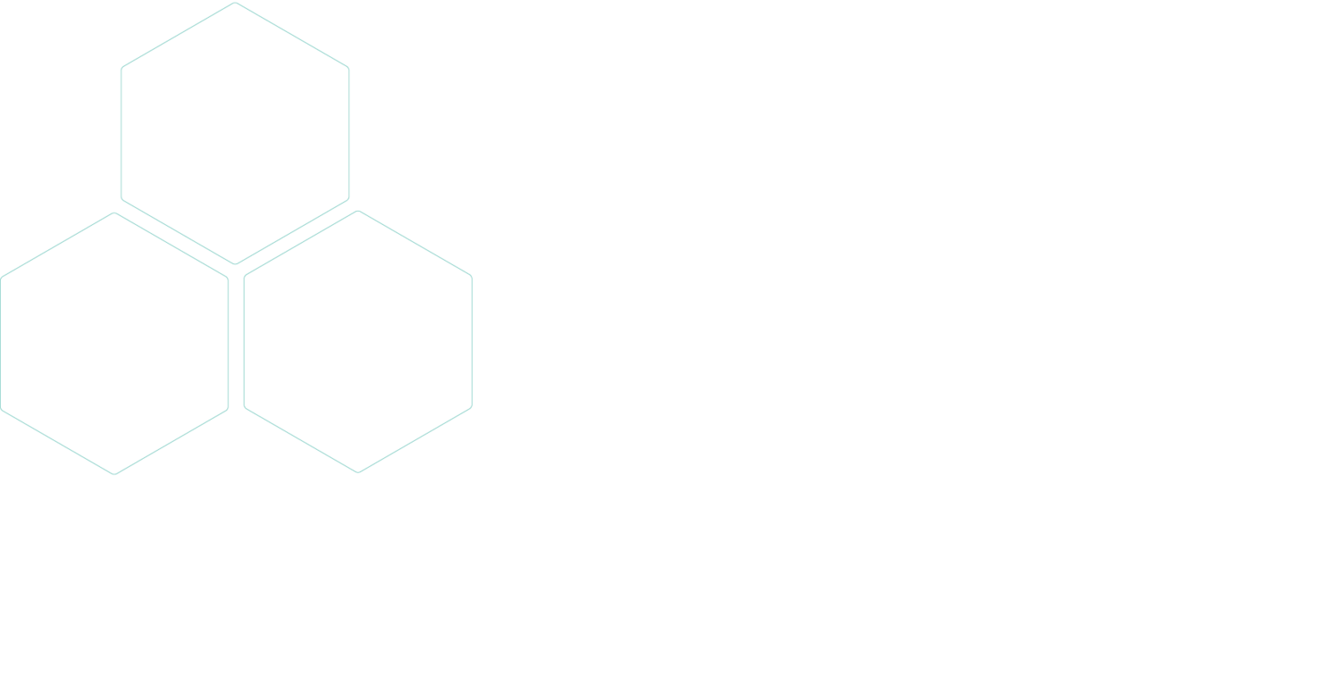 Radical Support Collective