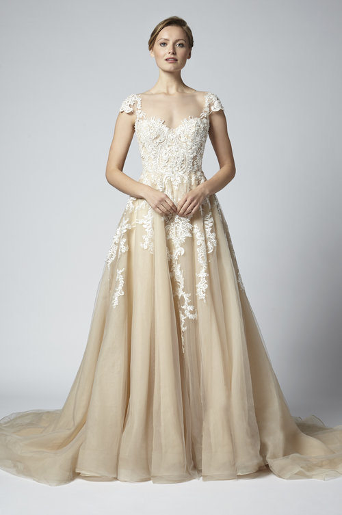 5d599623201 Champagne Nude embroidered and beaded Aline bridal gown