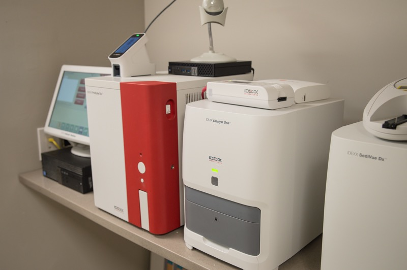 Some of Stockton Veterinary Hospital's extensive in-house Laboratory Equipment.