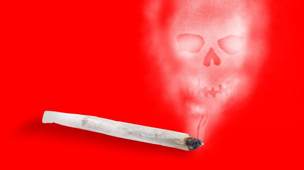 1498075546942-killer_weed-1.jpeg