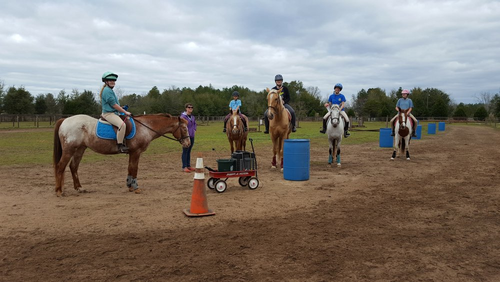 Sunriser Stables Horse Riding Lesson Pensacola FL