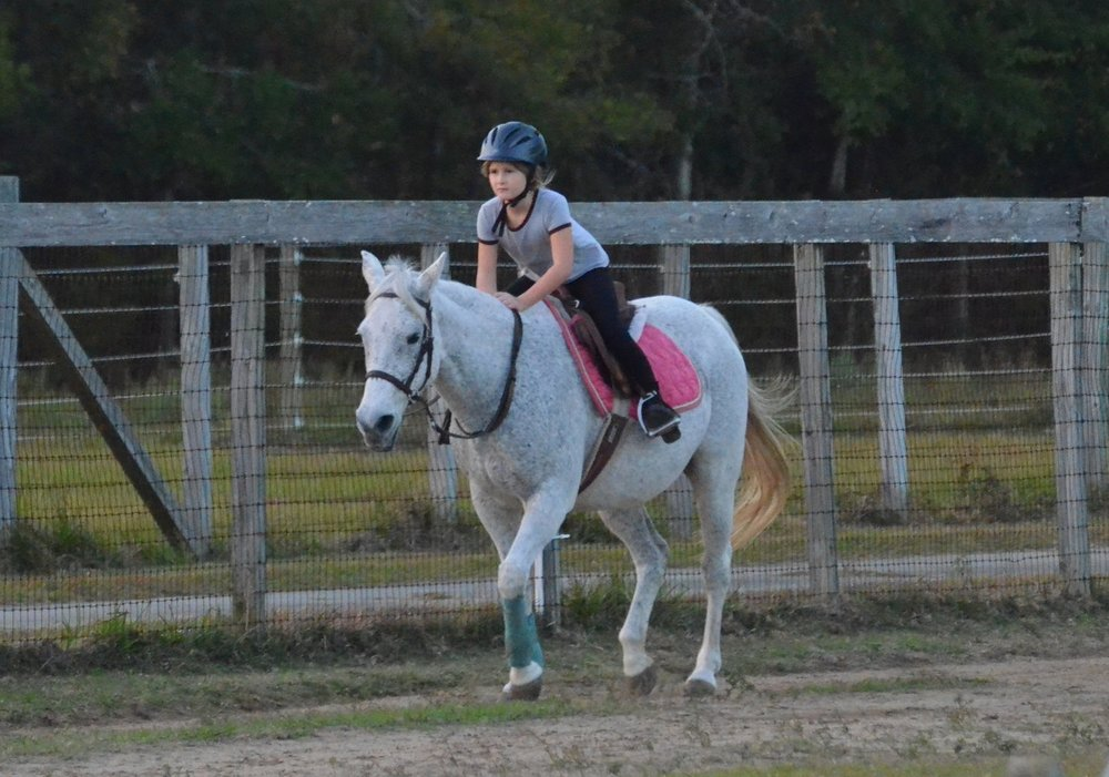Sunriser Stables - Pensacola FL - English Horseback Riding Lessons - Hunter Jumper Stable and Barn (25).JPG