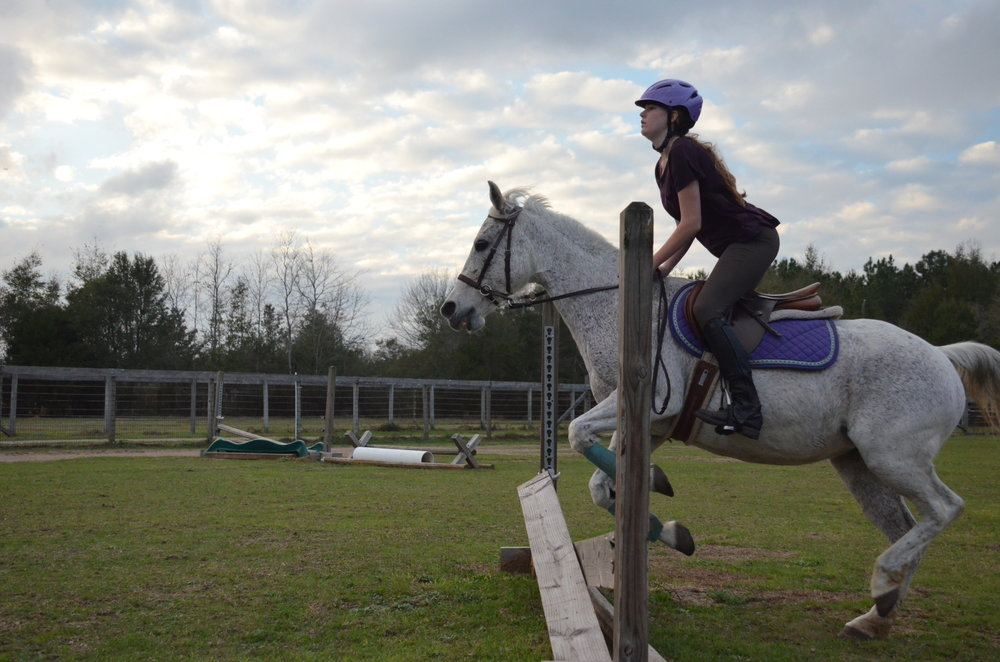 Sunriser Stables - Pensacola FL - English Horseback Riding Lessons - Hunter Jumper Stable and Barn (14).JPG