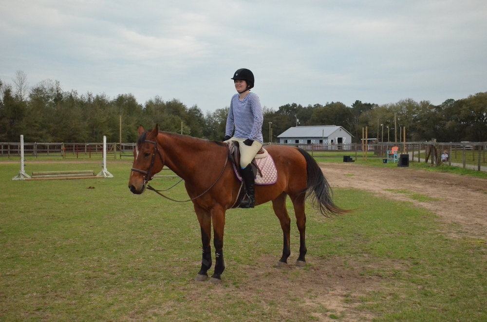 Sunriser Stables - Pensacola FL - English Horseback Riding Lessons - Hunter Jumper Stable and Barn (40).JPG