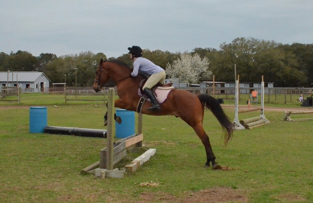Sunriser Stables - Pensacola FL - English Horseback Riding Lessons - Hunter Jumper Stable and Barn (42).JPG