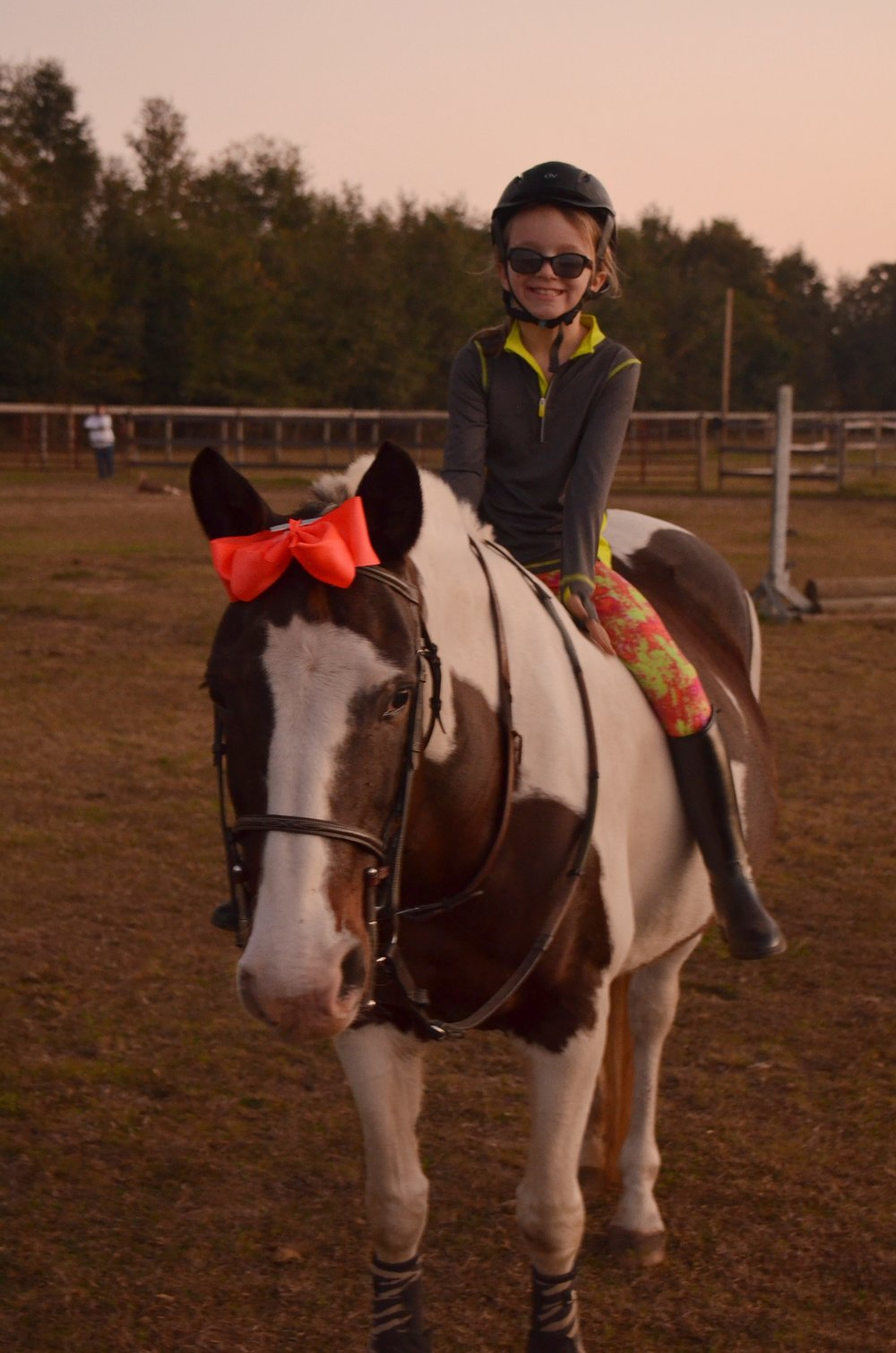 Sunriser Stables - Riding Lessons in Pensacola FL - English Horse Riding Barn and Stable (1).JPG