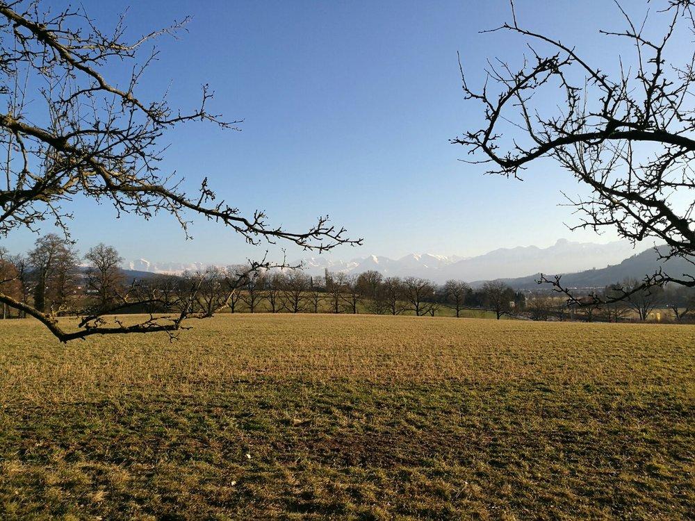 Here is the amazing view from Bio Schwand in Münsingen, Bern.