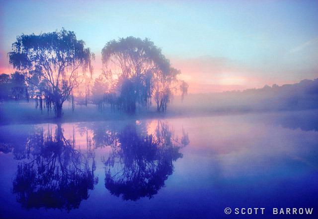 scott_barrow_001.jpg