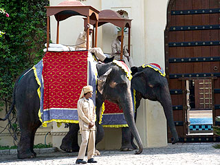 Two elephants at Katy Perry and Russell Brand Wedding