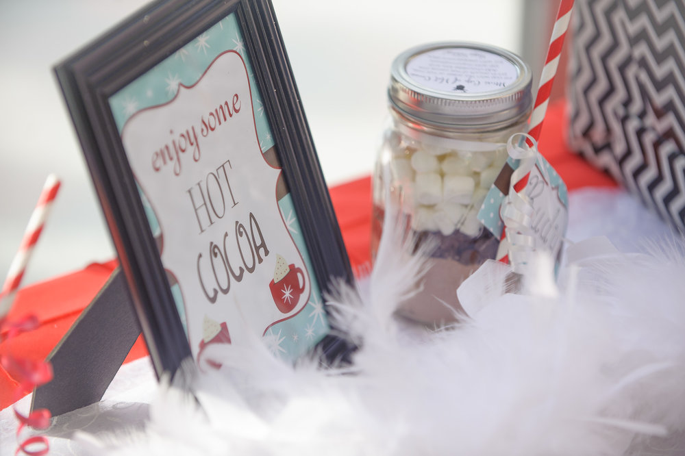 Winter Chic Birthday Party