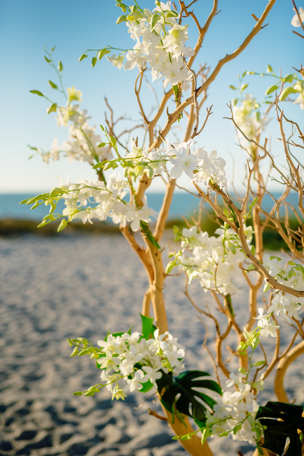 Libbys Flowers beach wedding.jpg